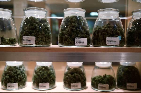 Medical_Cannabis_In_Jars1.jpeg