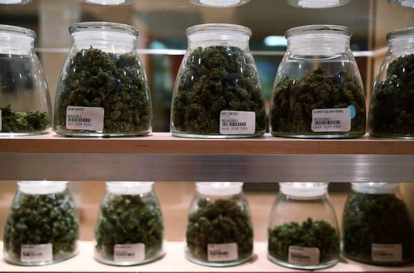 Medical_Cannabis_Jars.jpg