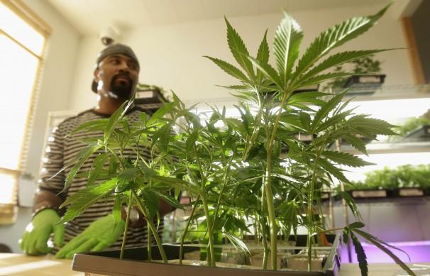 Medical_Marijuana_California-0f8a8.jpg