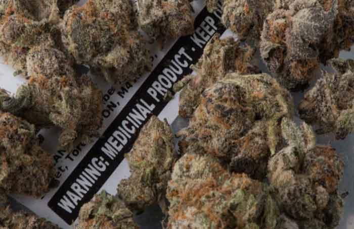 Medicinal_Cannabis_-_Graeme_Roy.jpg