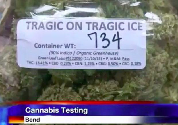 OregonMarijuana-620x436.jpg