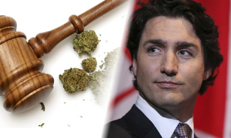 PM-Pot-Head-Justing-Trudeau.jpg