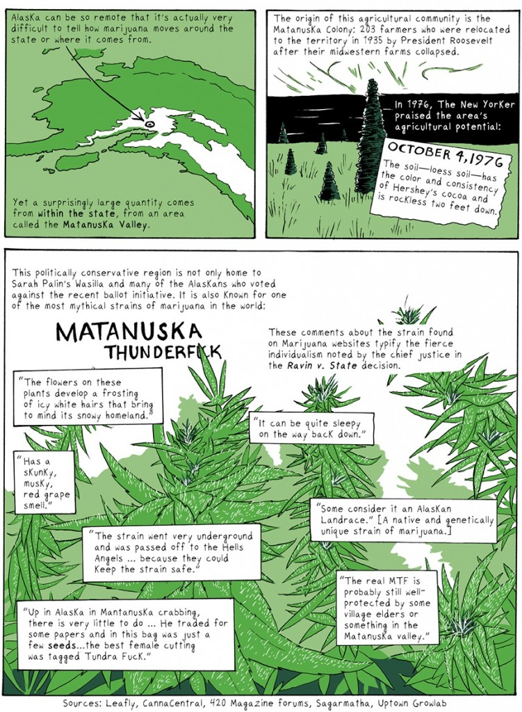 an introduction to the history of legalization of marijuana During the great depression, massive unemployment and increased public resentment and fear of mexican immigrants escalated public and governmental concern about the potential problem of marijuana by 1931, 29 states had outlawed marijuana in 1937 congress passed the marijuana tax act,.