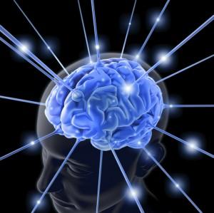 legalization-of-marijuana-brain.jpg