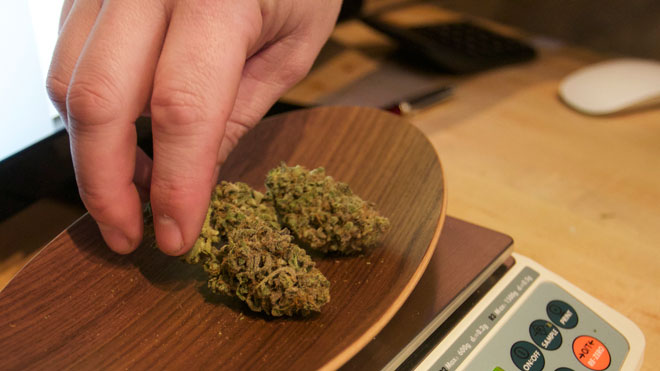 marijuana-weed1.jpg
