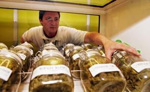 marijuana6.jpg