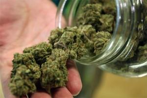 marijuana_g_091019_645_1.jpg