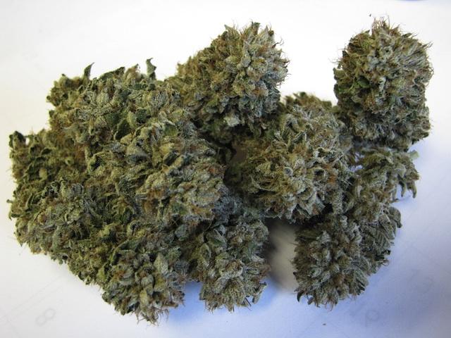 medical_marijuana11.jpg