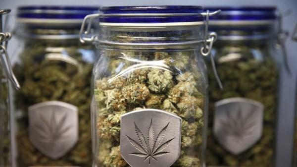 CannabisJarsLG.jpg