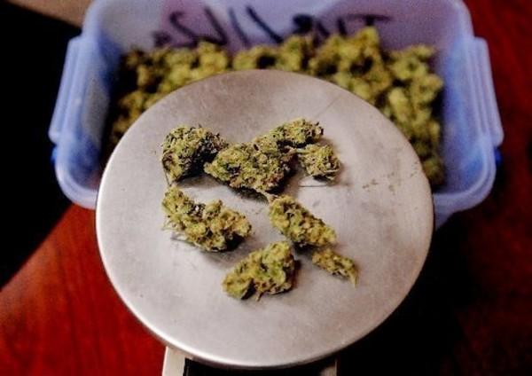 Cannabis_on_Scale.jpg