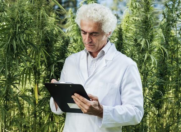 scientist-writing-on-clipboard-marijuana-cannabis-getty_large.jpg