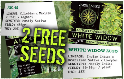 I was originally going to buy from attitude seed bank, But they are sold out of some of the strains I want. So, Im getting read to place an order thru Single Seed Centre and I was hoping someone here had a Discount Code for their company I could use.