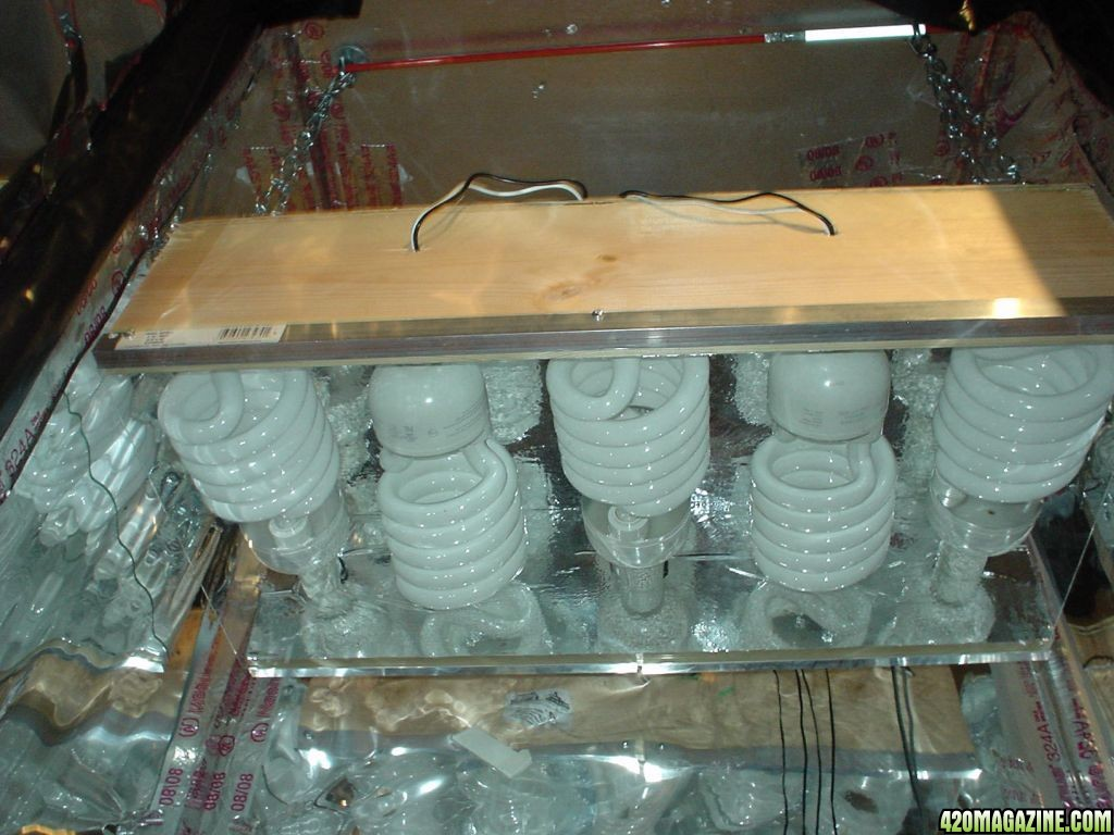04_Light_Box_inside growing with cfls in very limited space CFL Bulb Diagram Easy at webbmarketing.co