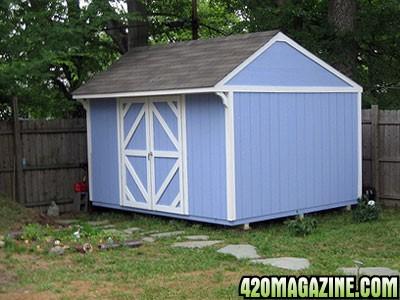10-x-16-workshop-shed-21264061.jpg