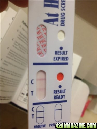 What do drug test results look like 11