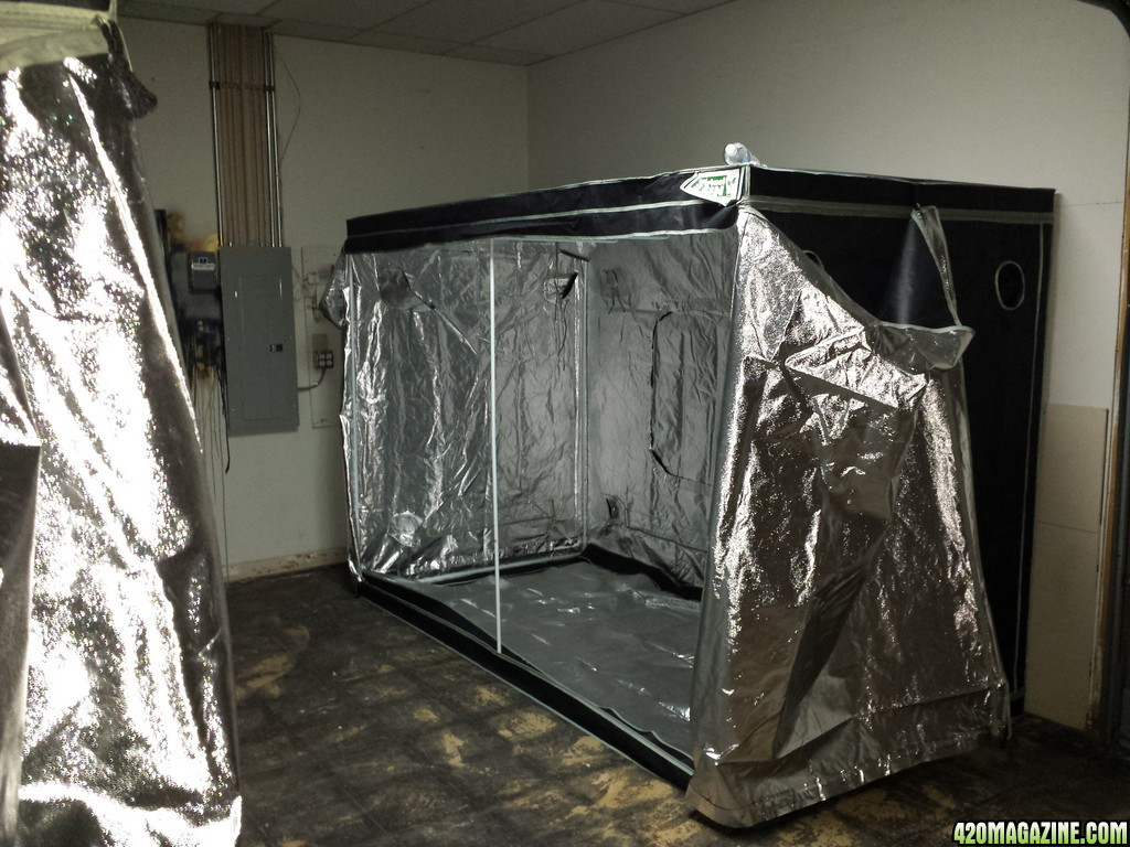 Grow Tent Reviews Wanted Page 4
