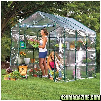 Gardenfaerie outdoor organic summer 2014 flux and lst in for Walk in greenhouse big lots