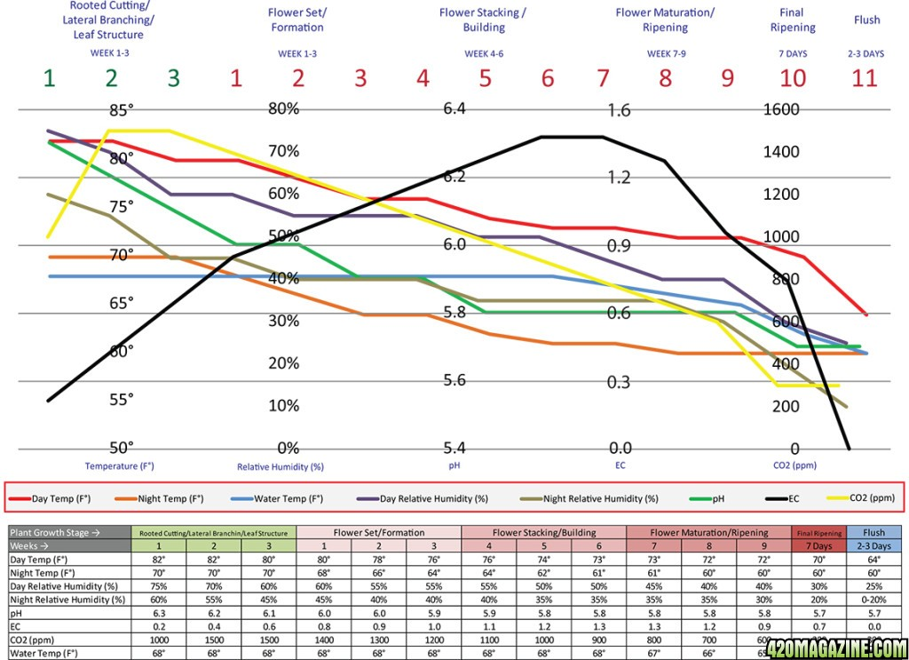 CCH2O-Recommendations-Graph-1024x743.jpg