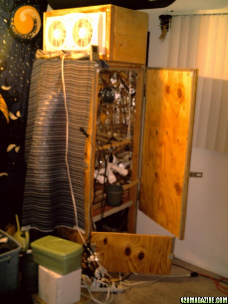 Grow Room Lights Off Temp