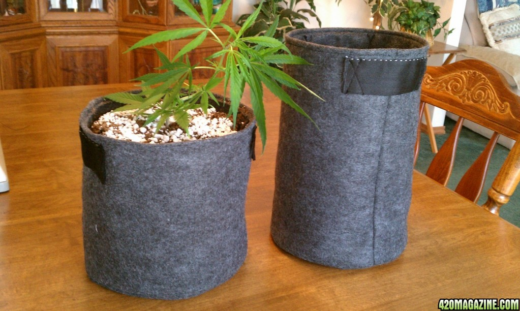 how to make grow bags at home
