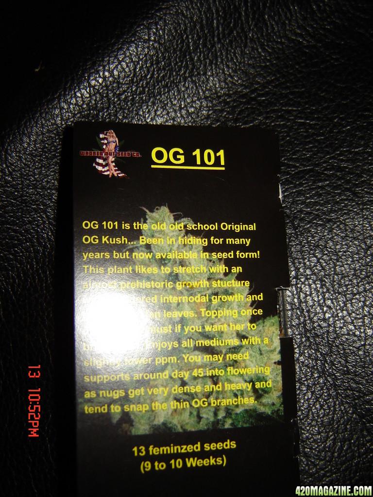 DSC07282.JPG