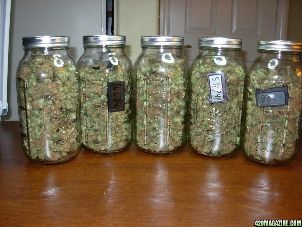 Ounce Of Weed Mason Jar Stevehman's Advanced L...