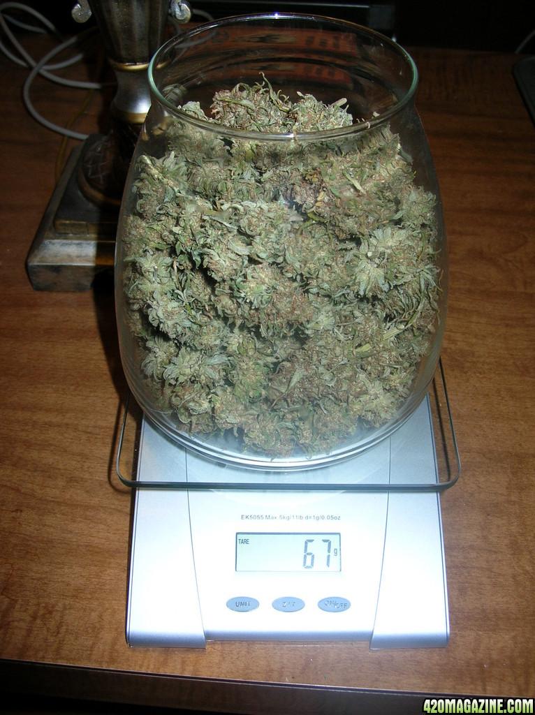 6 гр марихуаны конопля вредная