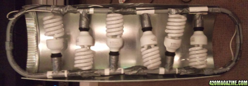 I Made A New CFL Light Fixture And Reflector Using Some PVC Piping. Added  It To The Mix Today;