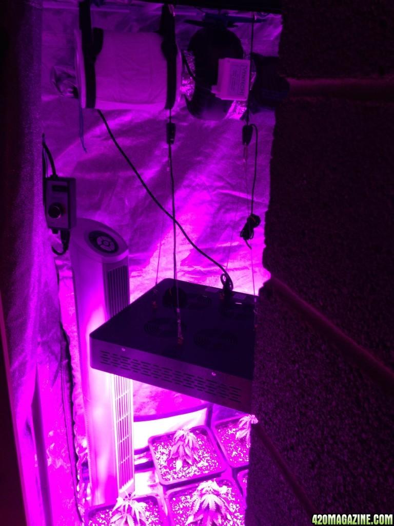 First Grow - 3x3' Tent - Soil - Mars 1200W LED | 420 Magazine ®