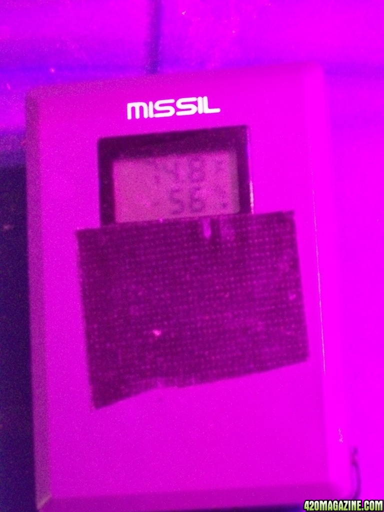 KingJohnC_s_Green_Sun_LED_Lights_Znet4_Aeroponic_Indoor_Grow_Journal_and_Review_2014-10-25_-_016.JPG