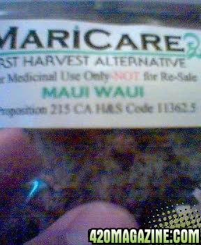 MauiWaui.jpg
