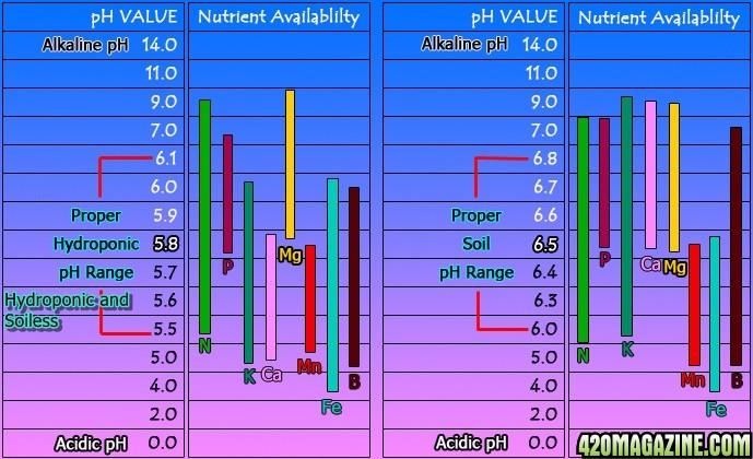 Nutrient_Availability_Chart3.jpg