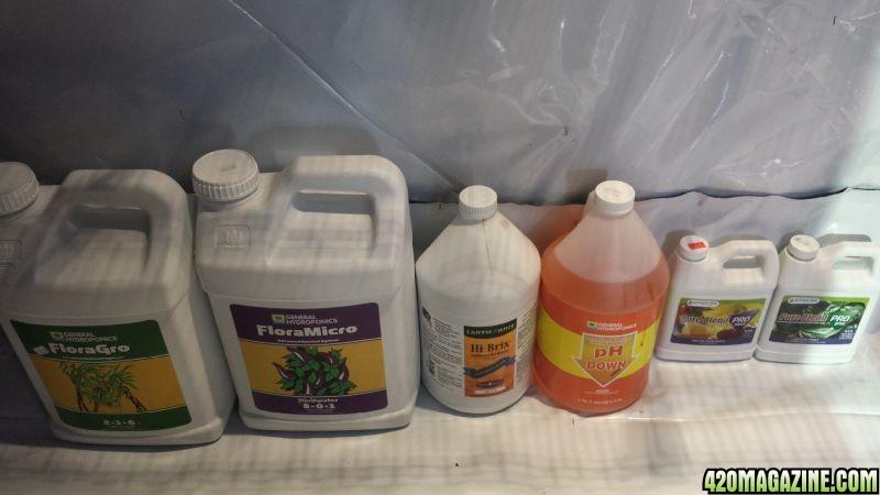 Nutrients_2.jpg