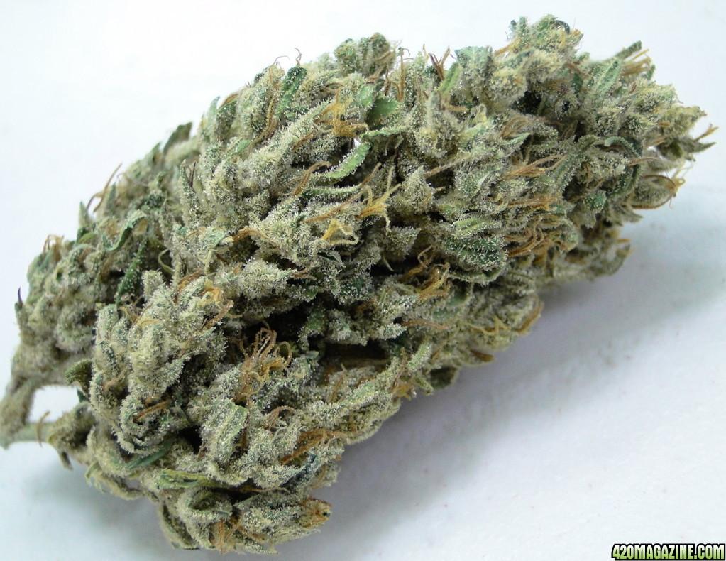 Creme De La Creme Cannabis Photos | Page 84 | 420 Magazine ®