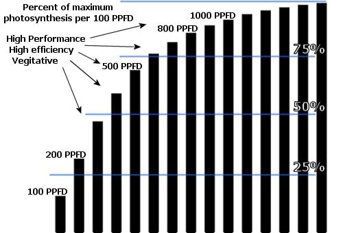 Afbeeldingsresultaat voor photosynthesis chart ppfd