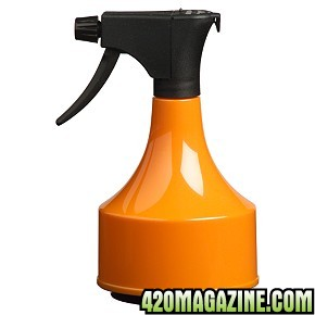 SprayBottleOrange.jpg