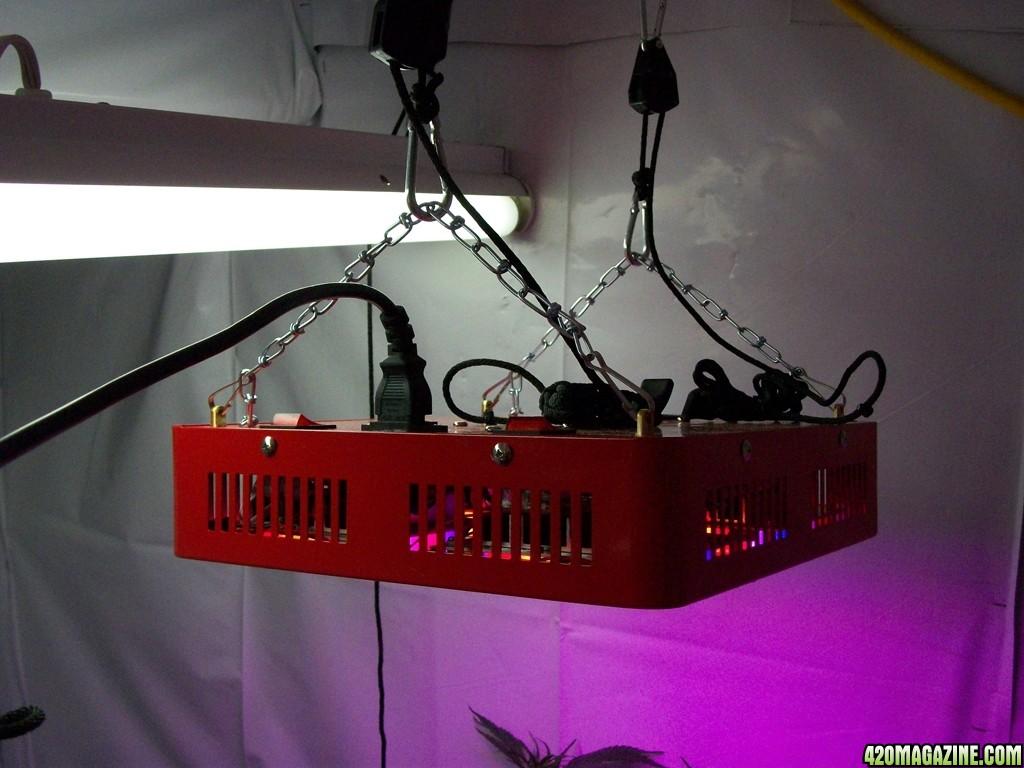 ZNET4_200w_LED_Grow_Light_Kill_A_Watt_Meter_Readings_-_001.JPG