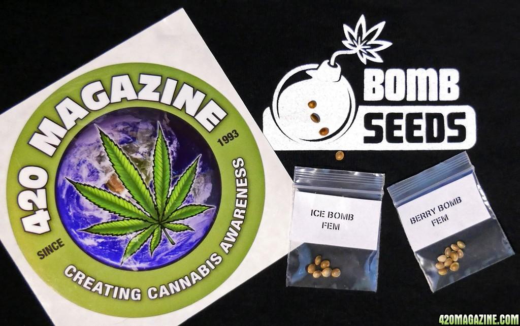 bomb-seeds-420.jpg