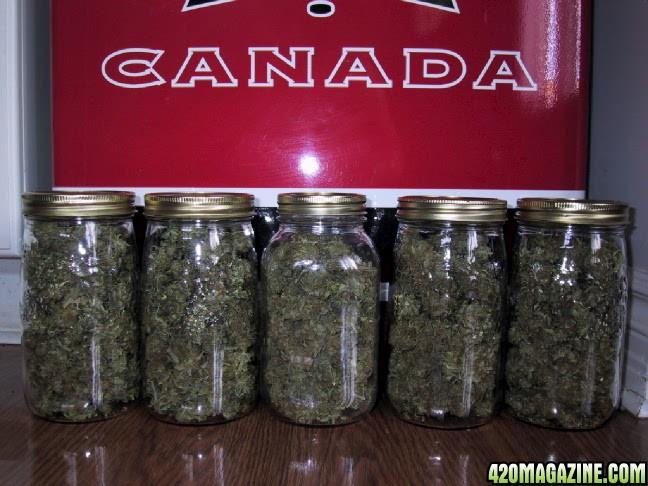 Ounce Of Weed Mason Jar Xtra Lrg Jars of Weed!...