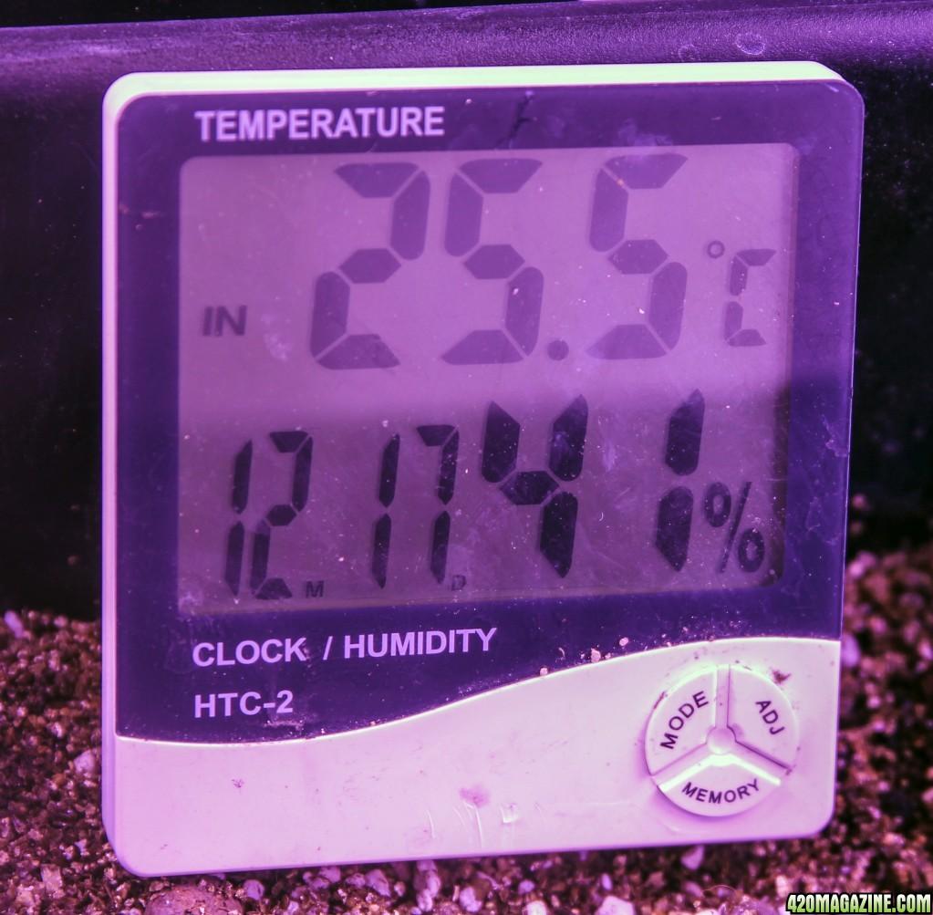 day-5-temp-humidity.jpg