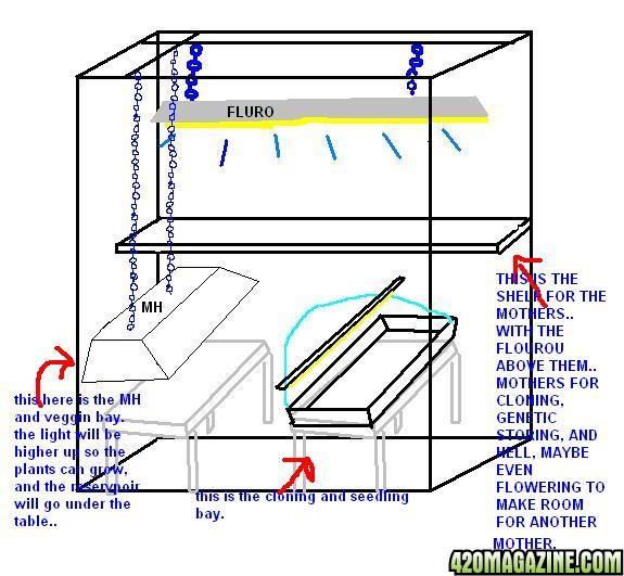 Grow Room Setup And Design