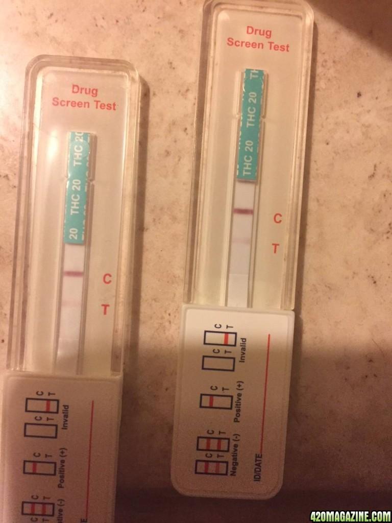 Question about drug test | 420 Magazine ®