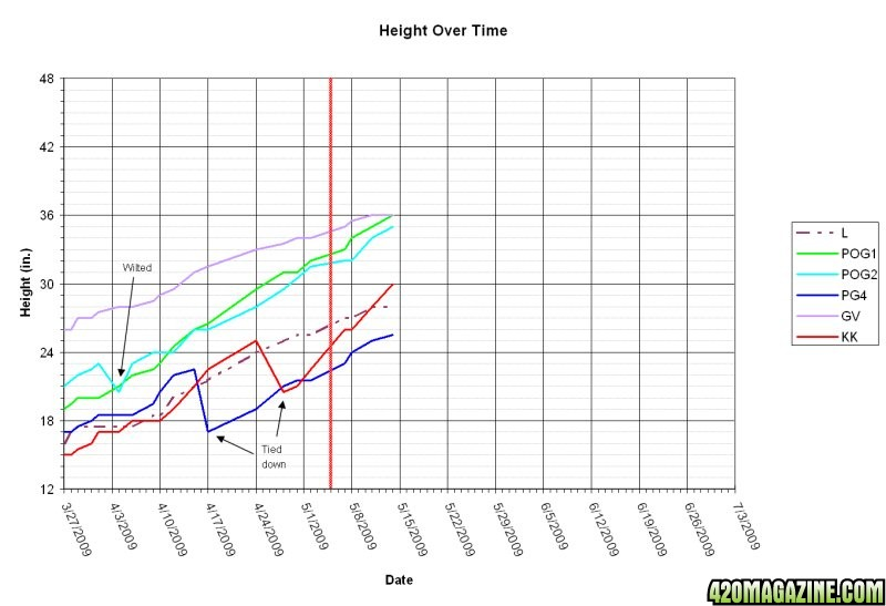 height7.jpg