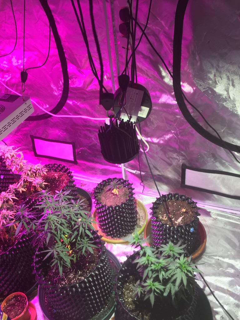 Cree Diy Cob Led Why Do People Use White Lights Page 7