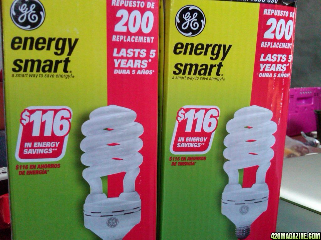 light_bulbs_bought.jpg