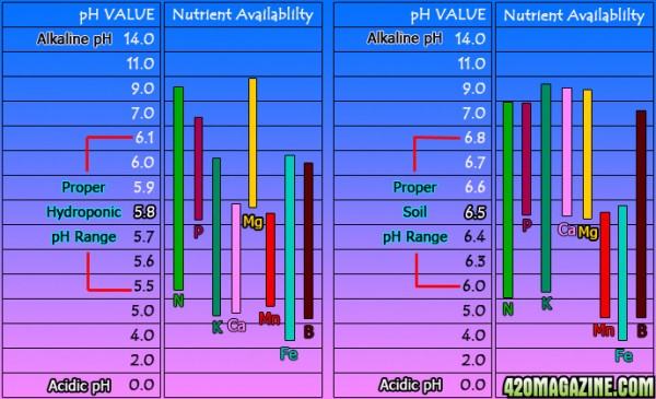 pH_chart77.jpg