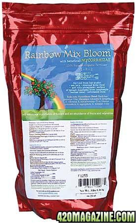 rainbow-mix-bloom-lg.jpg