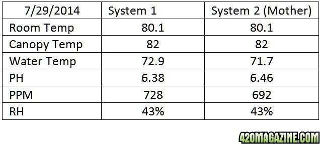 stats_7-29.jpg