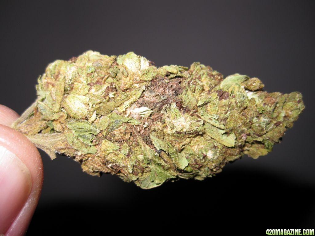 20 Popular Purple Cannabis Strains  The Chill Bud