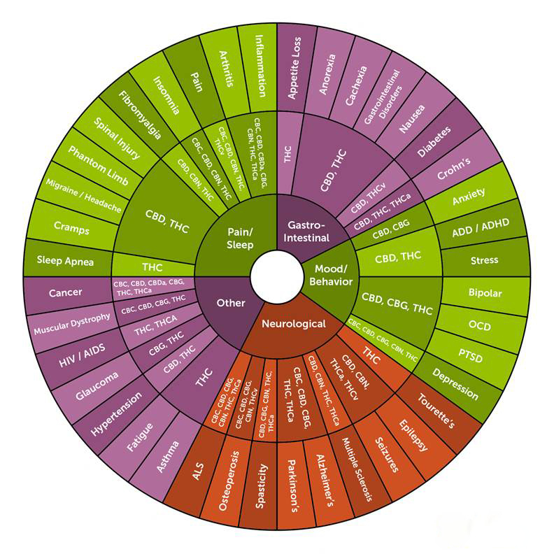 0kDQdUNqR0GCXCMdfgbs_leafly-cannabinoid-wheel-large.jpg